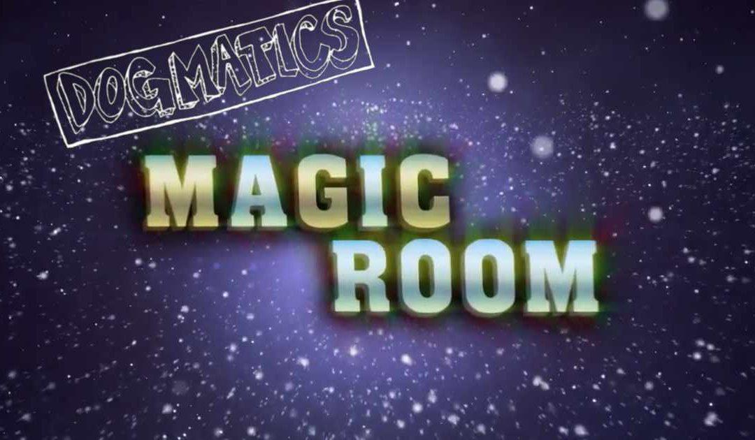 The Dogmatics at Magic Room concert